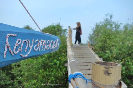 Huntan Mangrove Kulon Progo, Wisata Sekaligus Edukasi