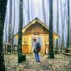 Tempat Wisata TerHits Instagram, Hutan Pinus Mangunan