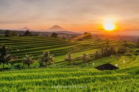 Paket Bulan Madu Bali 4 Hari 3 Malam
