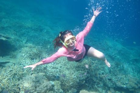 Paket Wisata Karimunjawa Dari Malang