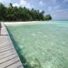 Saatnya Menikmati Surga Dunia dengan Destinasi Wisata Karimunjawa