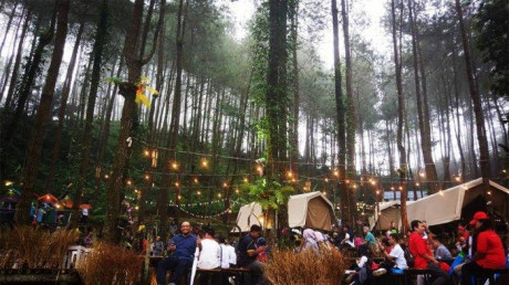 Glamping De'Loano, Tempat Menginap Bertema Alam yang Seru
