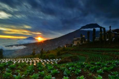 Sunrise Posong Tempat Wisata Dengan Spot Sunrise Terbaik