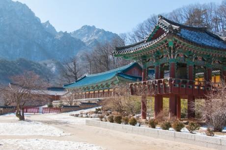 Paket Wisata Korea Selatan 5 Hari 3 Malam