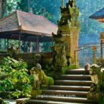 Monkey Forest, Ubud Bali