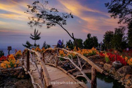 Bukit Lintang Sewu, Yogyakarta