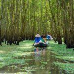 Sungai Mekong, Vietnam
