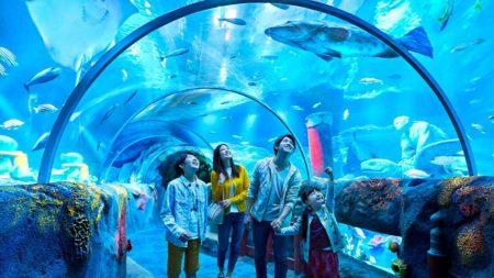 Sea Life Legoland Malaysia